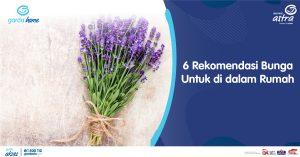 6 Rekomendasi Bunga Untuk di dalam Rumah